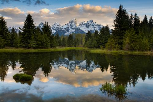 Teton Mountains Above Jackson Lake