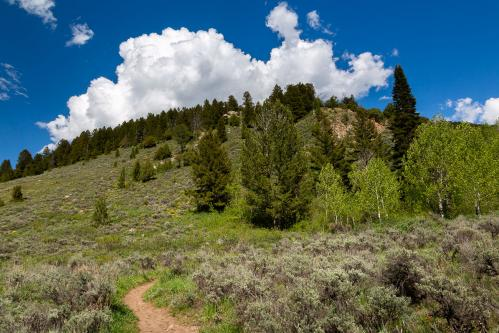 Gros Ventre Mountain Foothills and Sleeping Indian