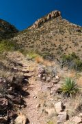 Yaqui Ridge Trail