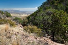 Joes Canyon in the Huachuca Mountains