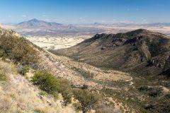 Desert Grasslands and Oaks