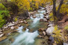 Shell Creek and Fall Colors