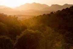 Warm Light over Canelo Hills