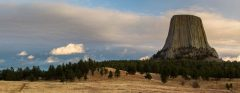 Devils Tower Above Forest