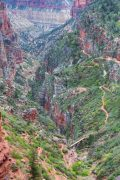 Distant Hikers on North Kaibab Trail