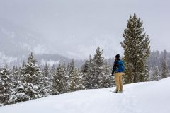 Snowshoer Looking Toward Teton Mountains in Snow