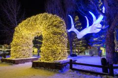 Grand Antler and Antler Arch