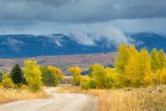 Autumn Colors in Rural Jackson Hole