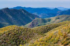 Oak Forest and High Desert Mountains