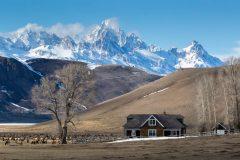 Miller House and Elk Herd