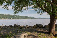 Tree Framing Hudson River