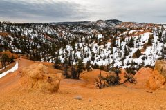 Red Canyon and Snow