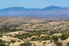 Rincon Mountains Above Desert Hills