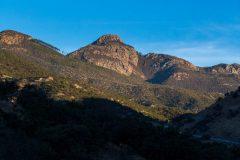 Mount Wrightson Above Desert Forest