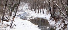 Oak Creek in Snow