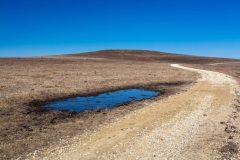 Mud Puddle Along Trail