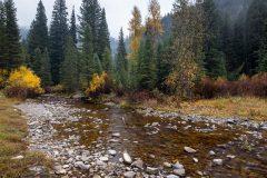 Darby Creek Below Early Winter Storm