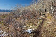 Hiking Trail Above Teton Valley