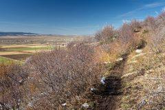Aspen Trail on Exposed Hillside
