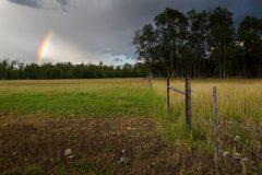 Rainbow over Ranch Fence