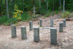 Thoreau Cabin Site in Woods