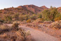 Mesquite Trail Below Peaks