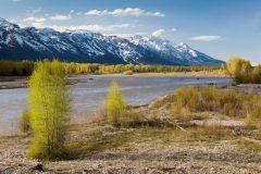 Snake River Below Teton Mountains
