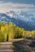 Teton Mountains Above Levee Path