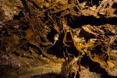 Boxwork in Wind Cave