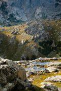 Alpine Tundra and Mountains