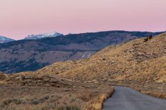 Forest Road in the Wind River Mountains
