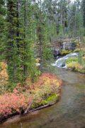 Winds and Turns Along Cascade Creek
