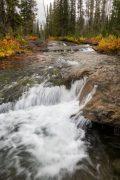 Cascading Falls Along Cascade Creek