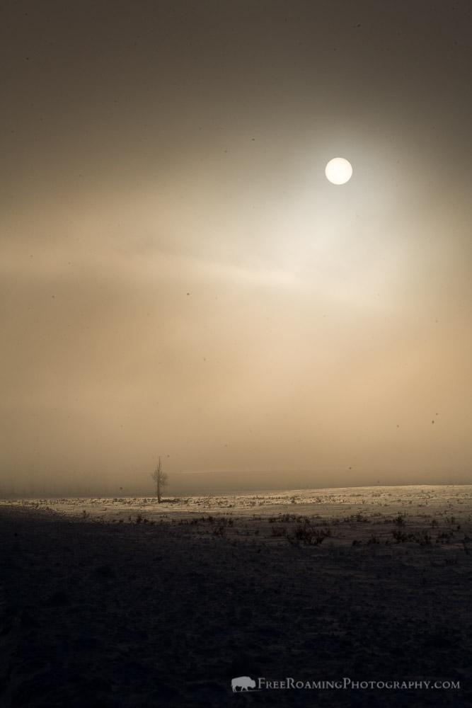 Sun Through a Cloud of Frozen Fog