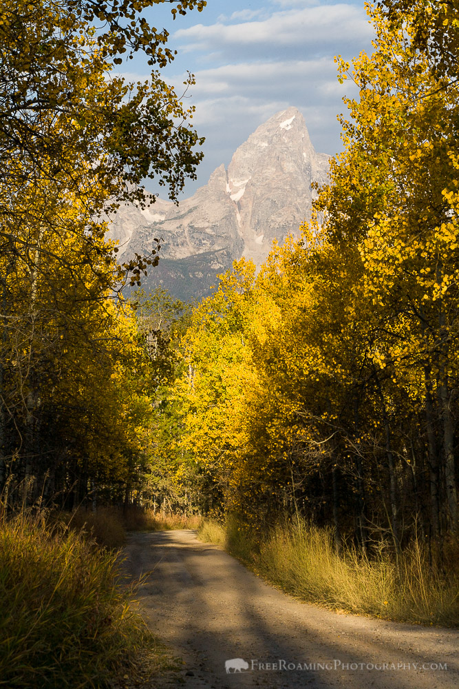 Fall Colors on Shadow Mountain