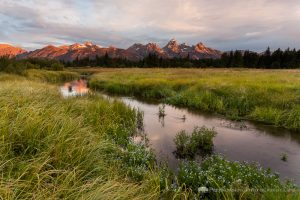 Sunrise Over Teton Mountains and Blacktail Ponds