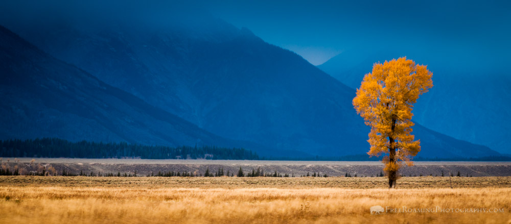 Antelope Flats – There's Always Good Light
