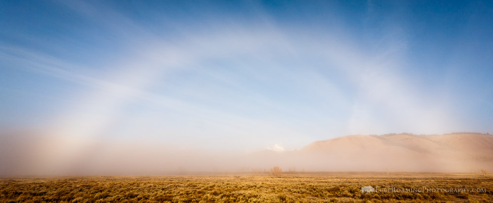 Fogbow in Front of Blacktail Butte