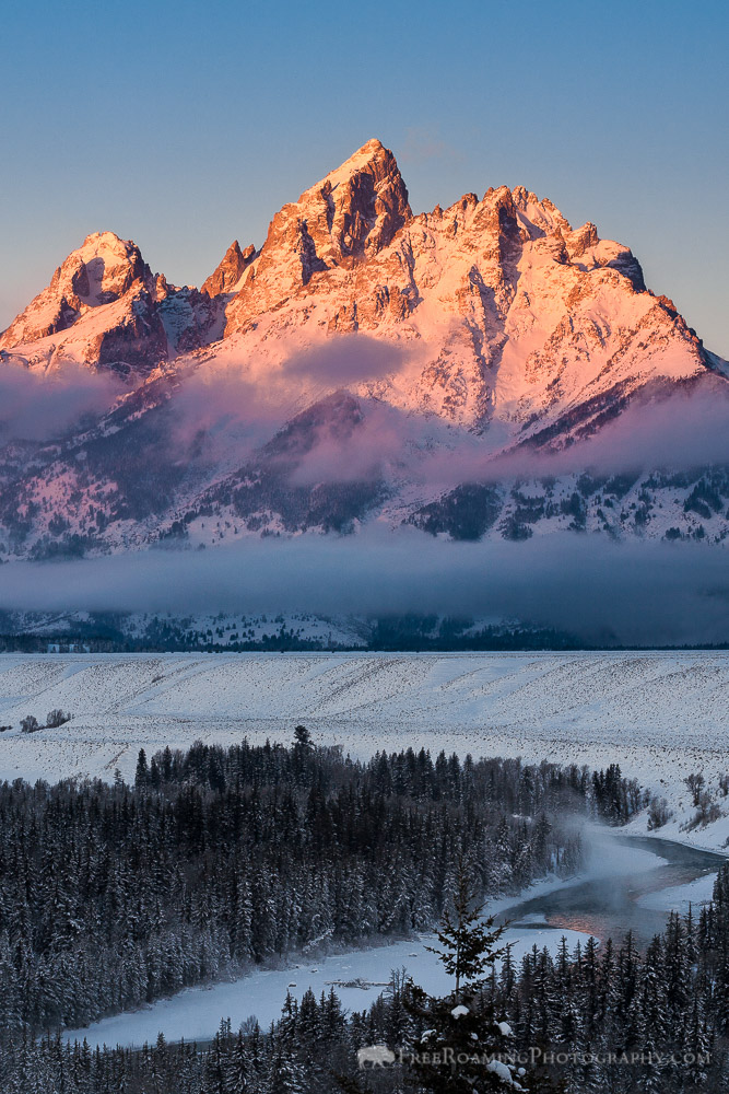 Happy Thanksgiving from Jackson Hole!