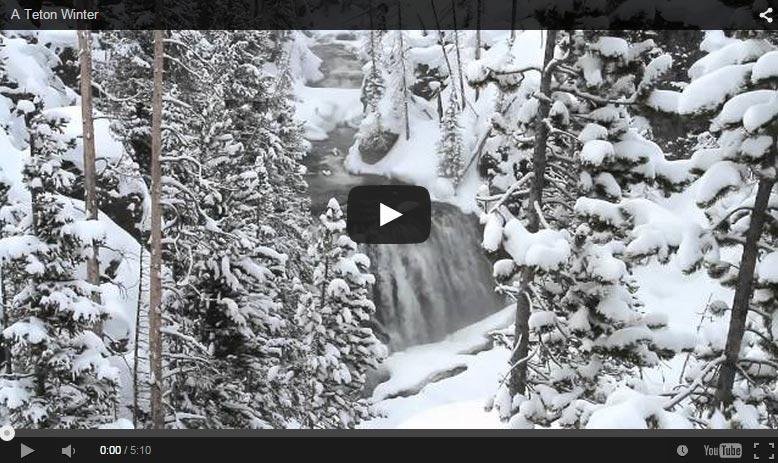 A Teton Winter – Landscape and Wildlife Video