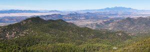 The Nature of Southern Arizona