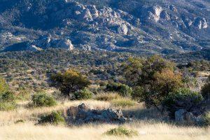 Education and Politics on the Arizona Trail