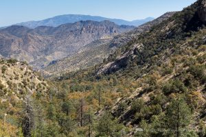 How the Arizona Trail Weeds Out Thru-Hikers